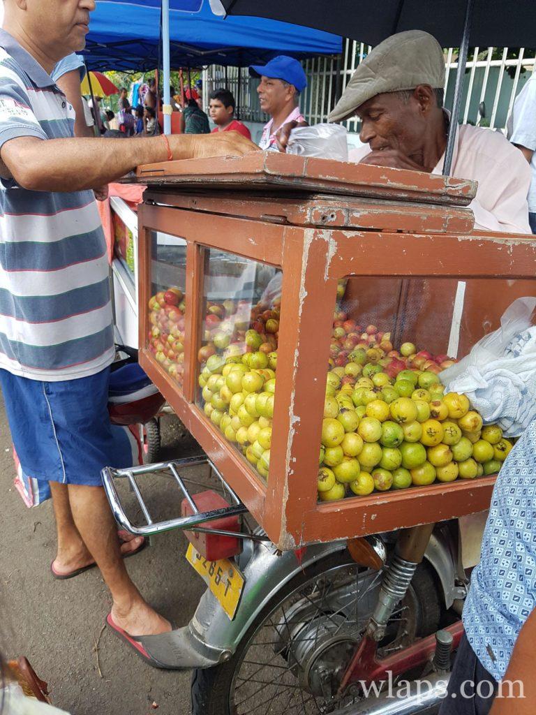 vendeur de goyaves à l'ile maurice : le meilleur des fruits exotiques de l'ile Maurice