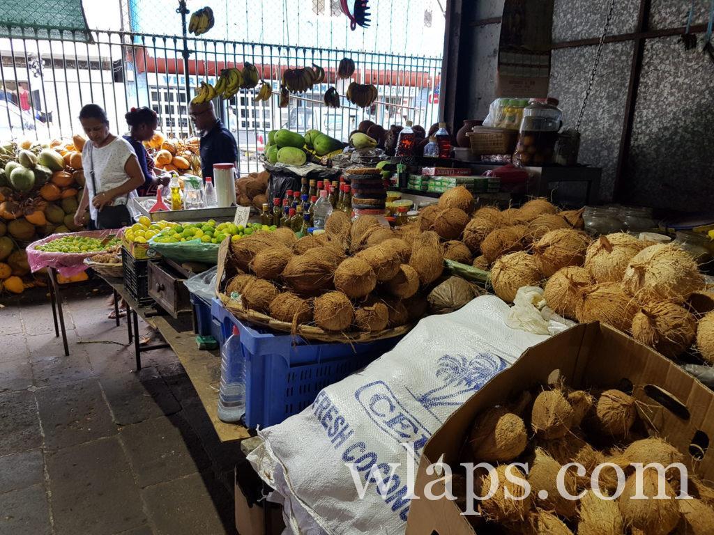 noix de coco fraiche à l'ile Maurice
