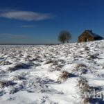 photo-randonnee-en-raquettes-a-neige-aubrac-2