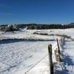 photo-randonnee-en-raquettes-a-neige-aubrac-7