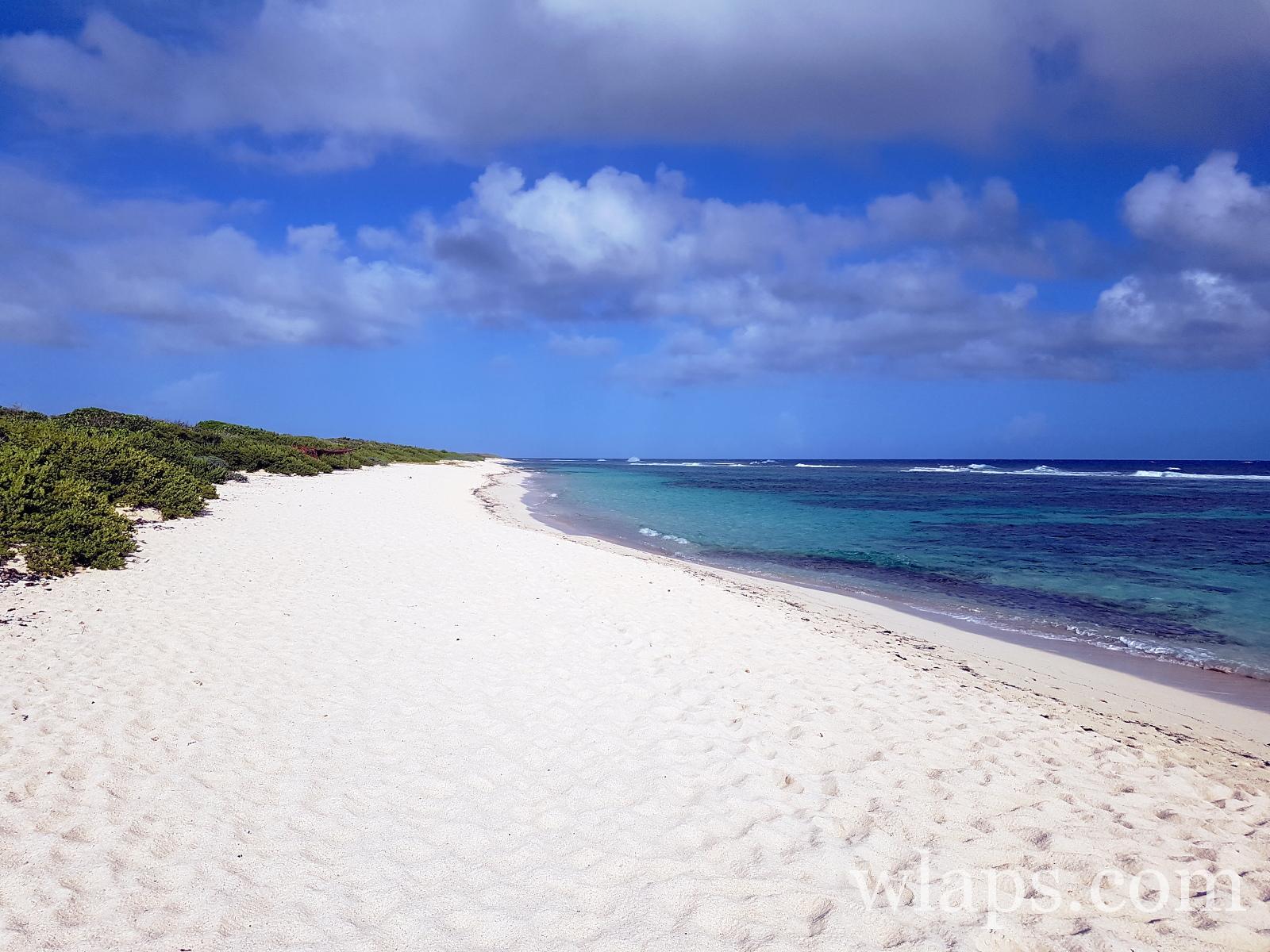 La belle plage naturiste des Salines en Guadeloupe