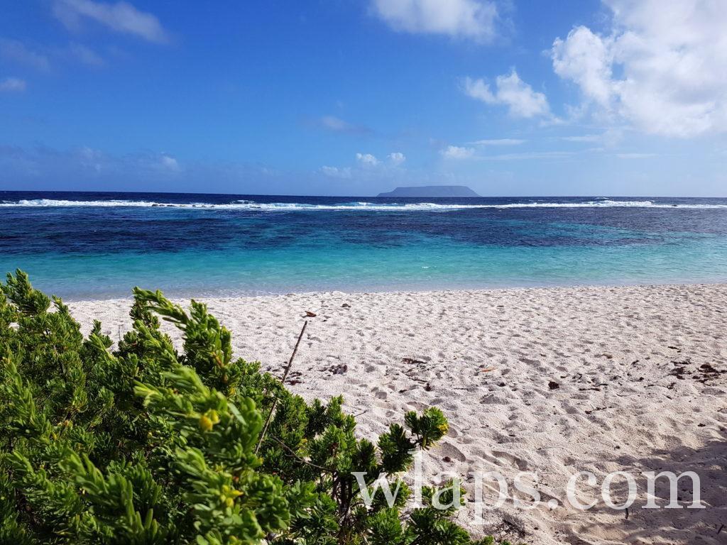 La très belle plage naturiste des Salines en Guadeloupe