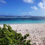 plage-nudiste-salines-pointe-chateaux-guadeloupe