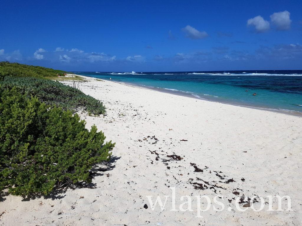 Coin de plage naturiste des Salines en Guadeloupe