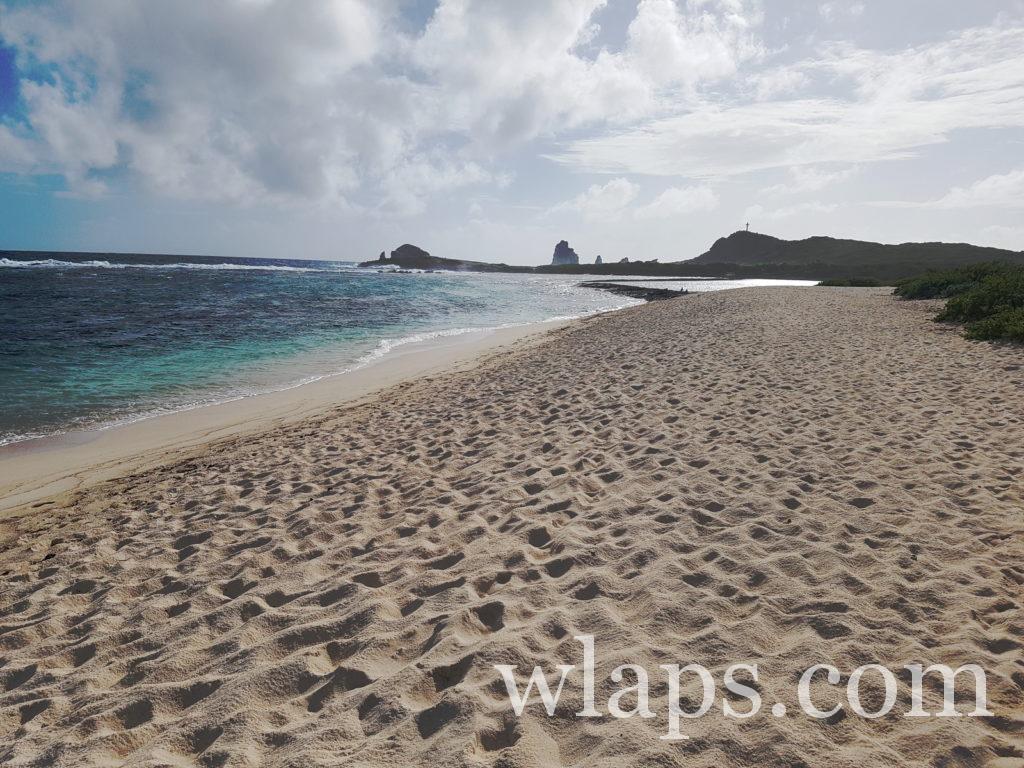 La magnifique plage naturiste des Salines en Guadeloupe