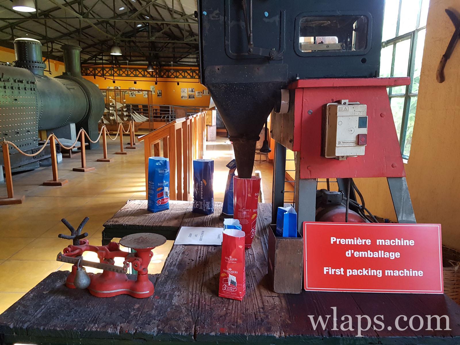 visite de l'usine de thé de bois chéri à maurice