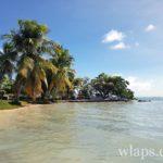 restaurant-plage-sun-7-beach-marie-galante-4