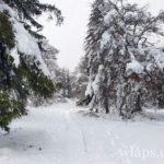 sentier-laguiole-raquettes-neige-3