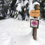 sentier-laguiole-raquettes-neige-5