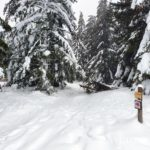 sentier-laguiole-raquettes-neige-7