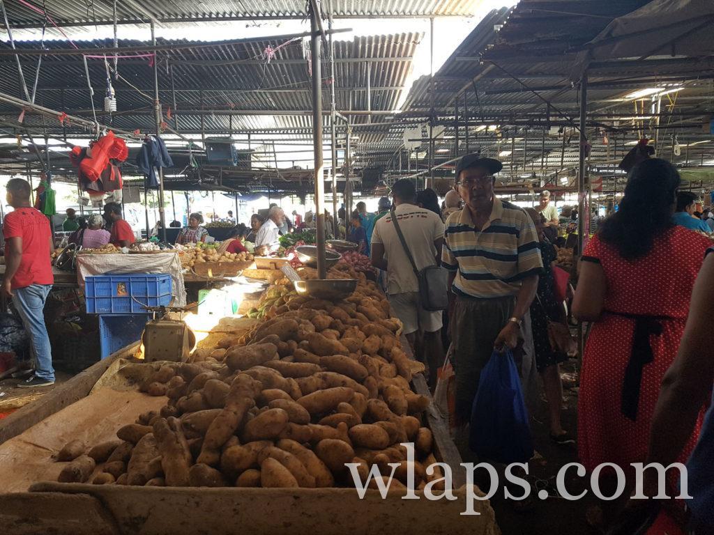 patates douces (légume tropical) au marché de goodlands à l'ile Maurice