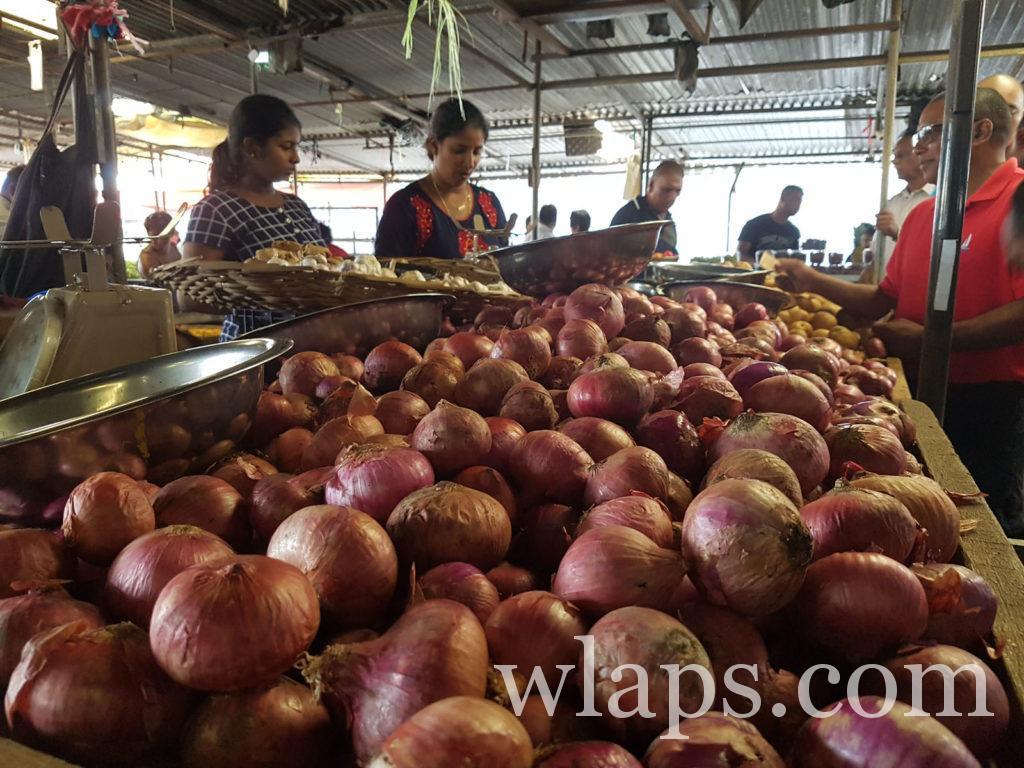 oignons rouges légumes tropicaux de l'ile Maurice