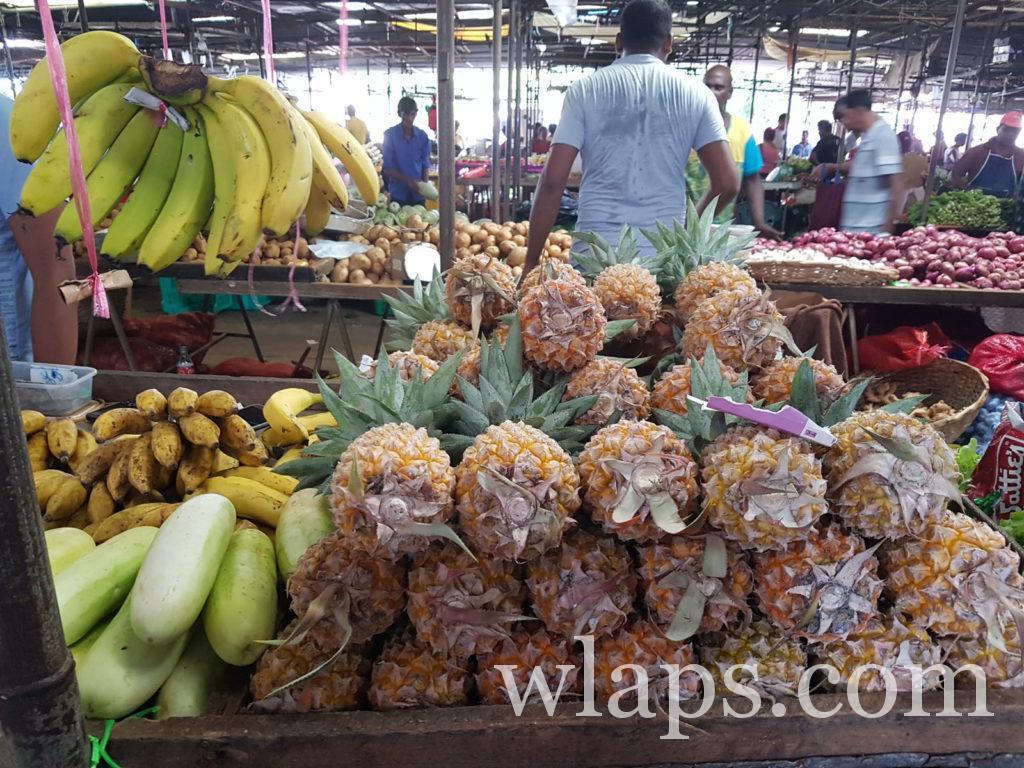 vendeur de fruits exotiques a l'ile maurice