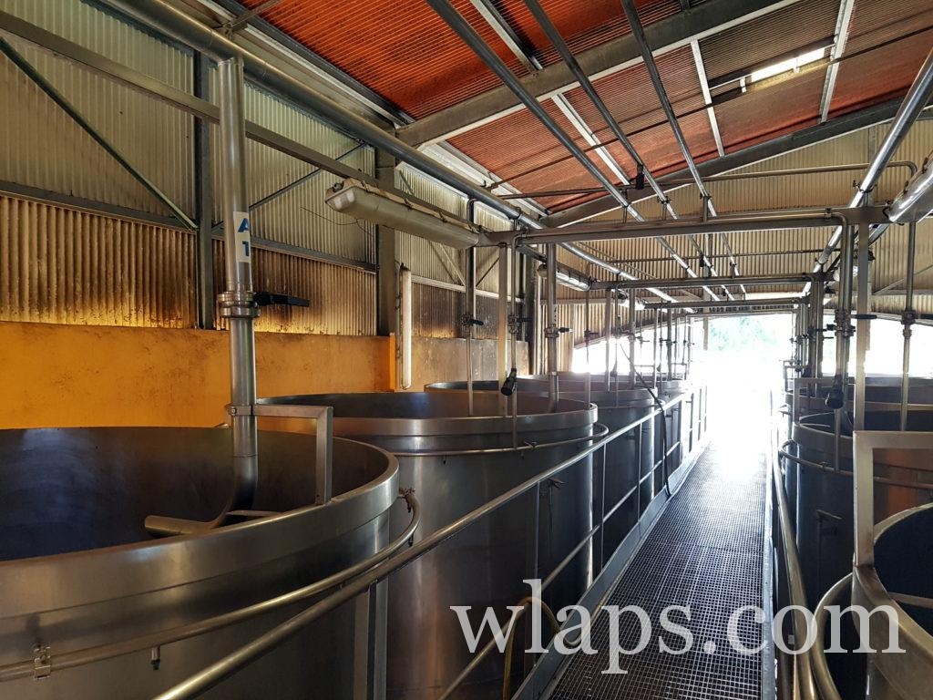 Visite du hangar à cuves de la distillerie Bielle à Marie-Galante