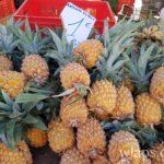 ananas-victoria-au-marche-du-chaudonr-la-reunion