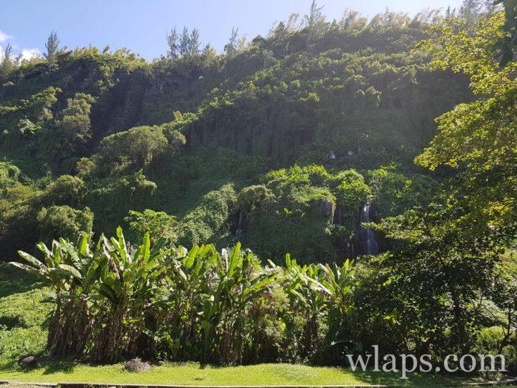 Le Parc de l'Anse des Cascades à l'île de La Réunion