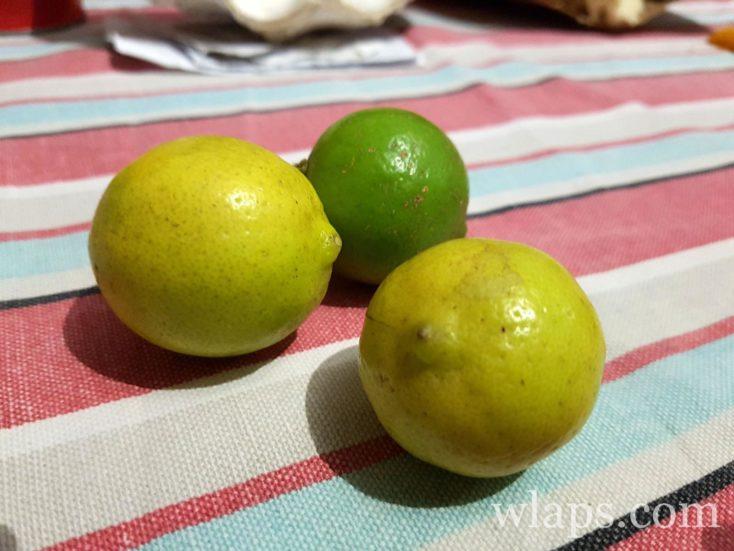fruits exotiques que l'on ne trouve qu'ici : citrons limons de l'ile de Rodrigues à l'ile Maurice