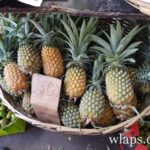 exemples-prix-ananas-marche-goodlands-ile-maurice