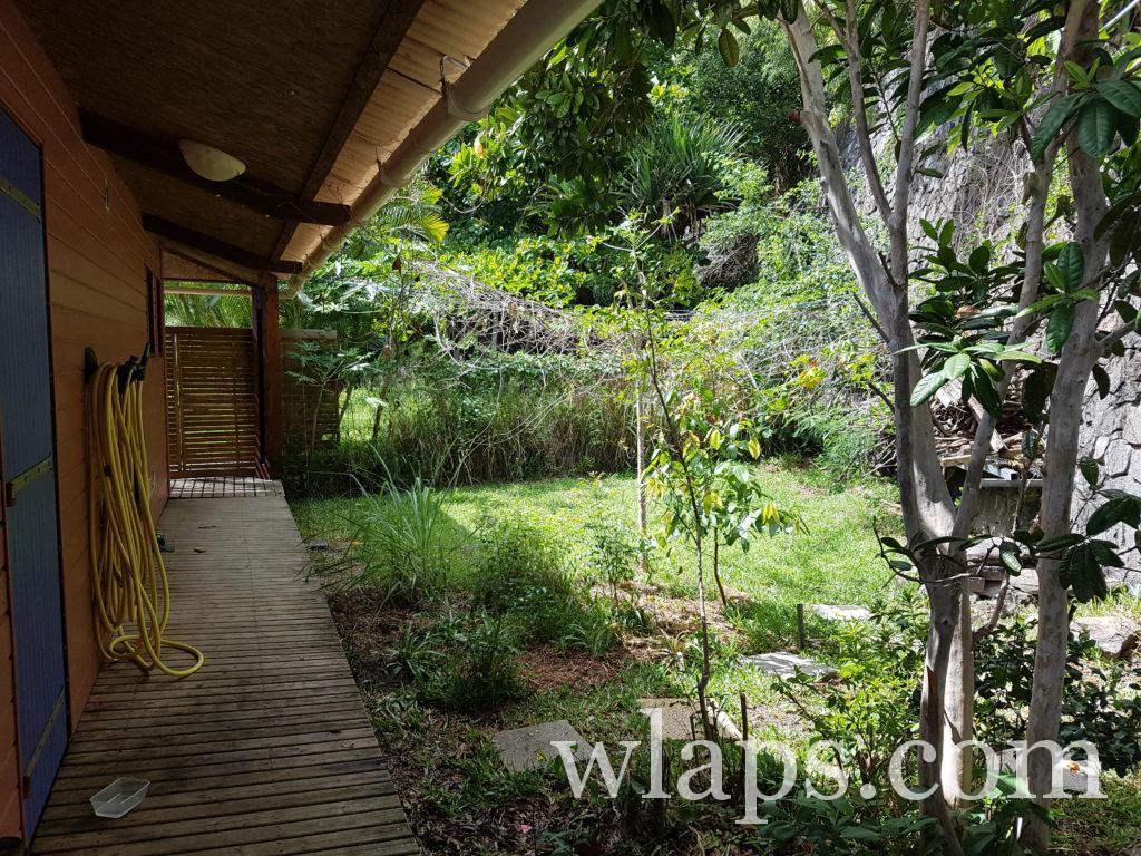 A l'arrière, se trouve un jardin avec des arbres fruitiers à la réunion