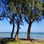 la-plage-bel-ombre-ile-maurice