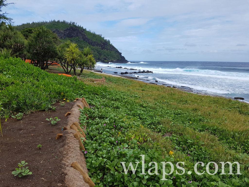 La belle plage de Grande-Anse à La Réunion