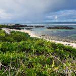 la-plage-roches-noires-ile-maurice