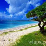 la-plus-belle-plage-de-ile-maurice-plage-de-palmar