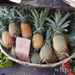 Panier d'ananas de l'île Maurice