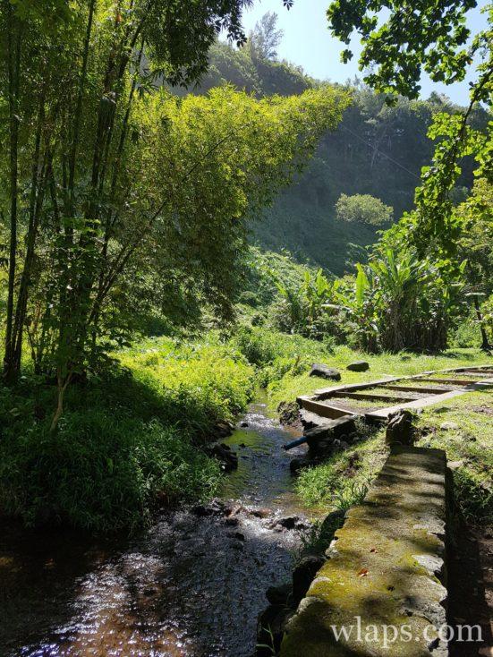 Le parc Anse des Cascades à l'île de La Réunion