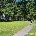 promenade-parc-anse-cascades-la-reunion
