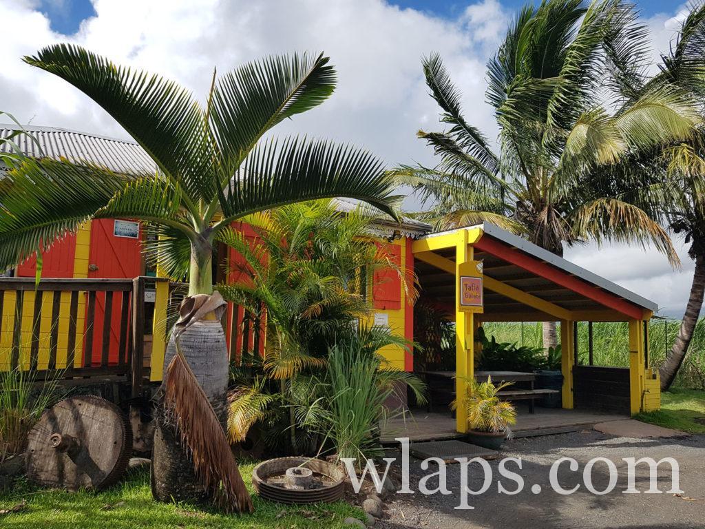 Visite de la Distillerie de Savanna à La Réunion