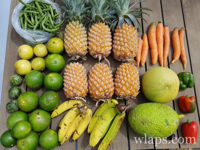 quels sont les fruits de l'ile maurice