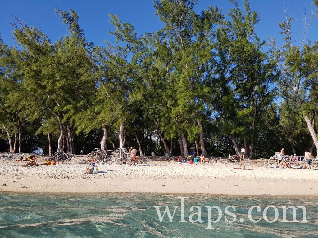 Baignade et snorkeling à la plage de l'Ermitage à l'ile de la réunion