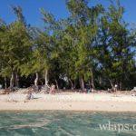 snorkeling-plage-ermitage-la-reunion