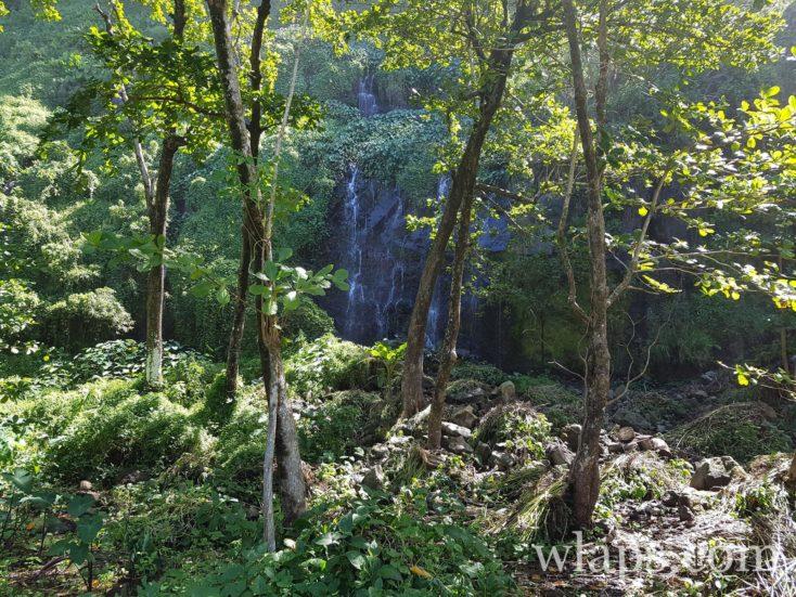 Promenade à l'Anse des Cascades à l'île de La Réunion