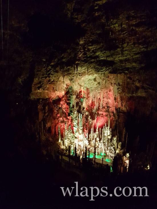 la foret de stalagmites