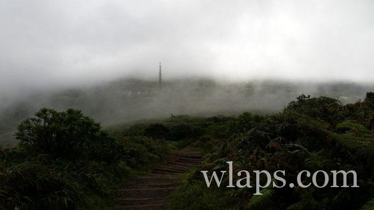 Brouillard sur la randonnée au volcan de Martinique