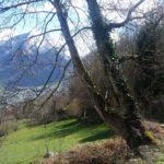 la-randonnee-agnouede-GR10-pyrenees-4
