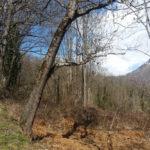 la-randonnee-agnouede-GR10-pyrenees-5