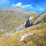 la-randonnee-cabane-de-aguila-pyrenees-4