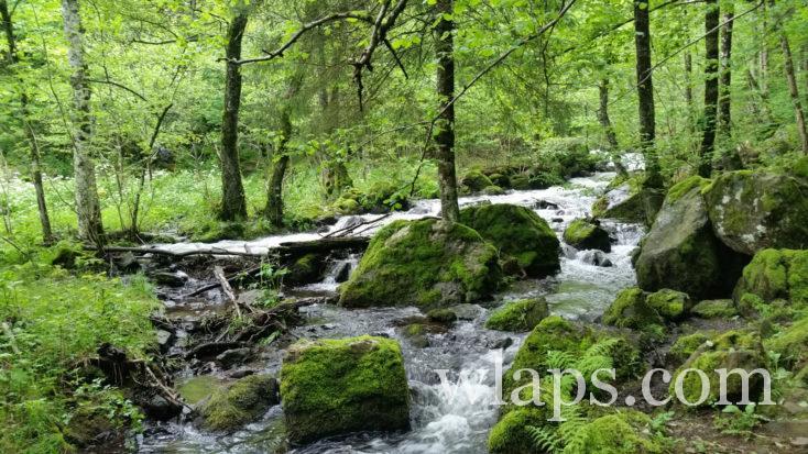 cours d'eau qui descend de la cascade