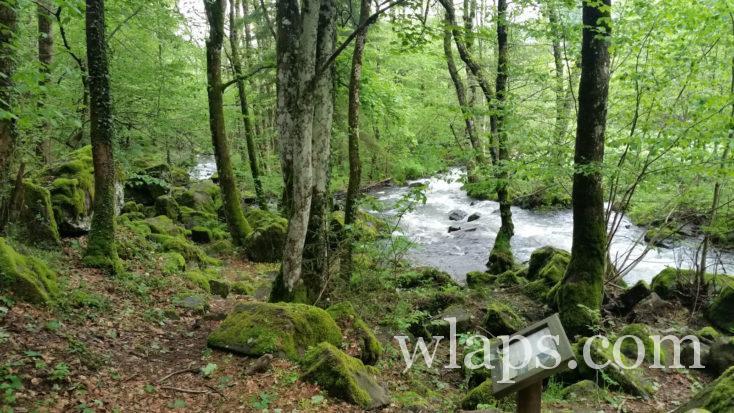 cascade des Oules près de Laguiole