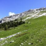 la-randonnee-chamechaude-alpes-3