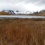 la-randonnee-lac-chevril-alpes-5