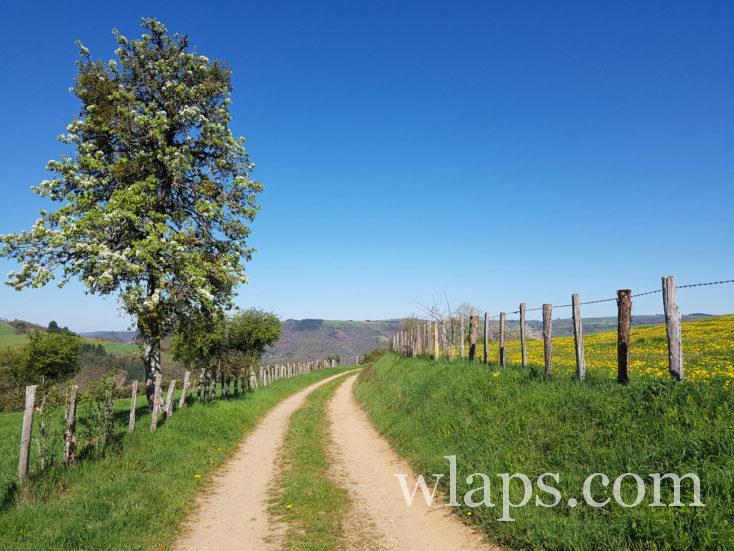 La randonnée sur Lo Camin d'Olt