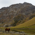 la-randonnee-pic-de-la-montagnette-pyrenees-2