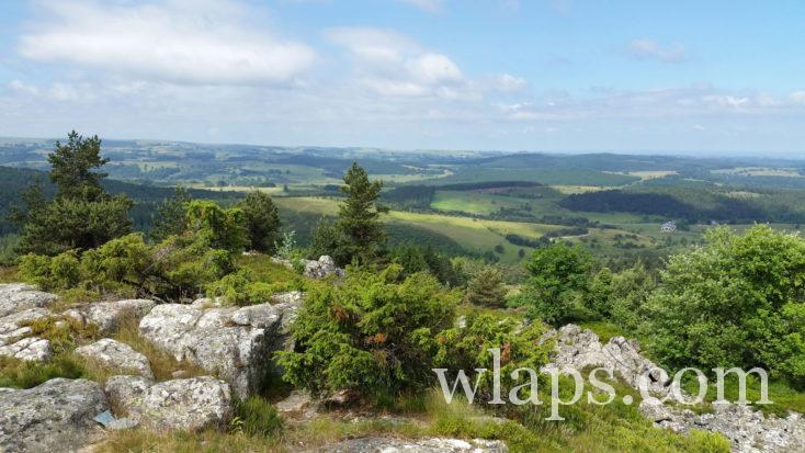 paysage verdoyant du Cantal