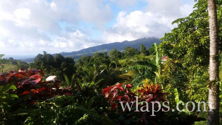 Vue sur la Montagne Pelée en Martinique