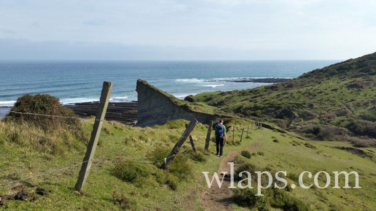 sentier dans le Géopark de la Côte Basque