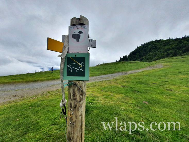 randonnée au Col d'Aspin